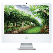 "Apple iMac 24"" Core 2 Duo"