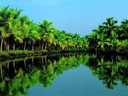 Another view of the backwaters of Kerala