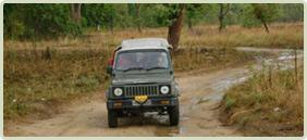 Jeep safari at Jim Corbett National Park