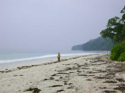 View of the Havelock Island Beach